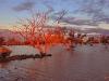 l051_cooper_creek_sunset_f1b7451
