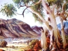 namatjira-valley-ghost-gum